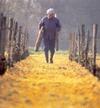Touraine_winemaker